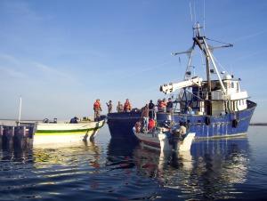 Lancha e interceptora en Vaquita Marina