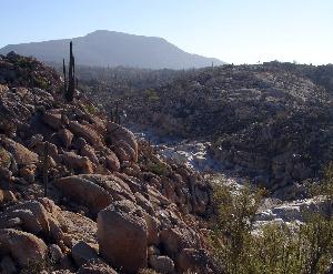 Zona desertica de Punta Chivatito