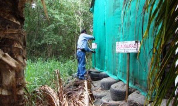 Profepa - La ley al servicio de la naturaleza - A fin de proteger un ...