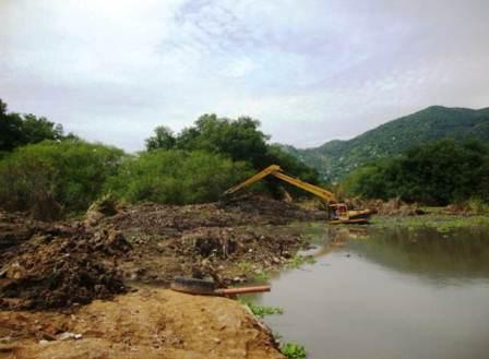 afectaciones a manglar